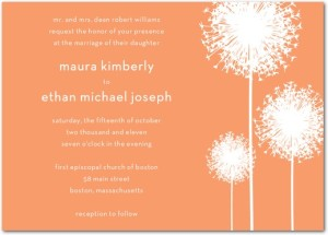 whimsical-wedding-invitations4